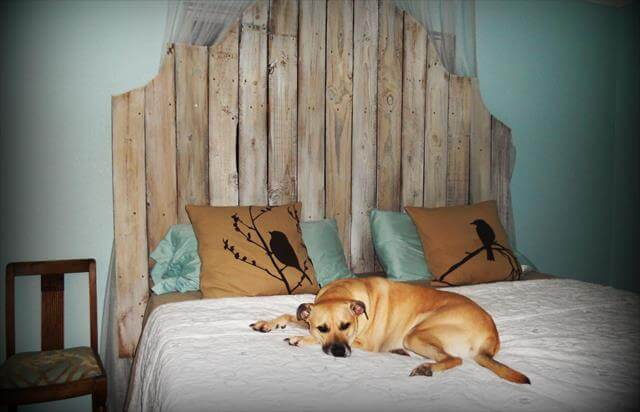 Headboard Design Dog Bed