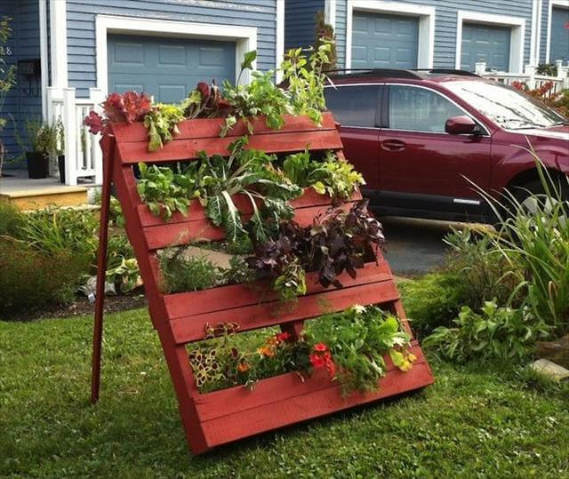 Cheap Gardening Ideas: DIY Garden Idea For Decorating Inexpensively