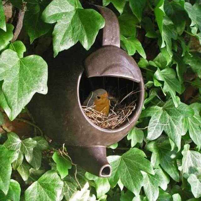 Awesome Birs House Made From Old Tea Pot