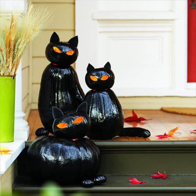 Orannge Eyes Black Cat Pumpkins