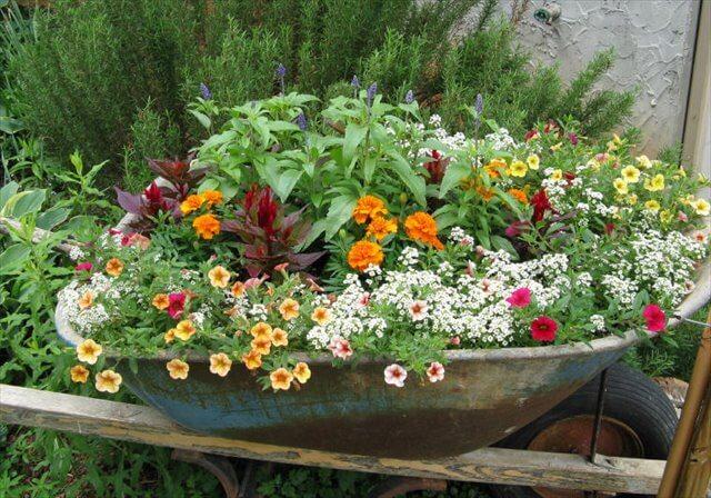 Wheelbarrow Planter Idea