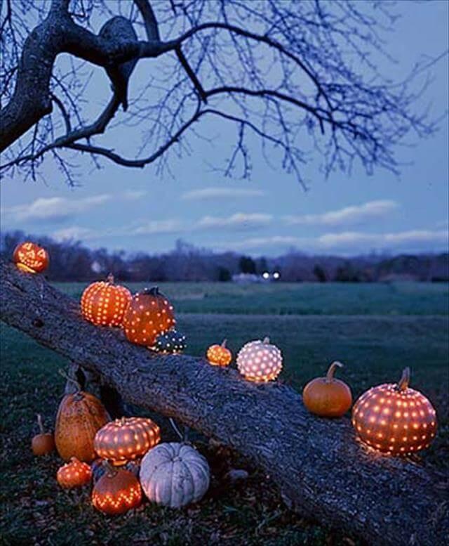 Different Colors Pumpkin Decor Pattern