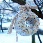 8 DIY Homemade Birdseed Wreath