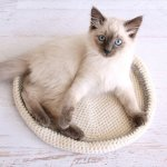 Crocheted Cat Bed