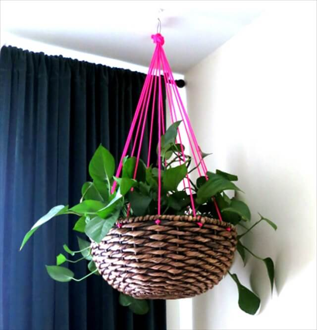 Awesome Hanging Basket