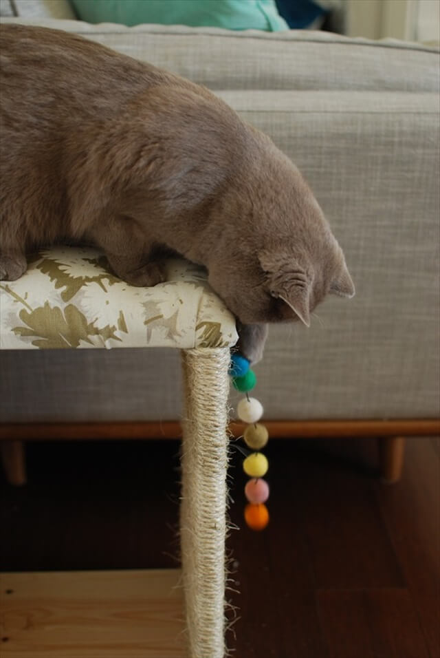 Cat Toy IKEA Hack