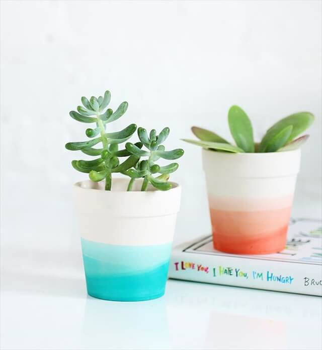 Dip Dyed Planters