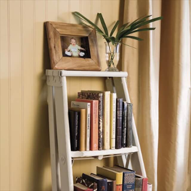 Stylish Ladder Shelf