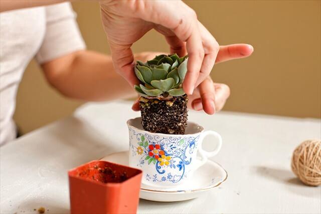 tea-cup-idea