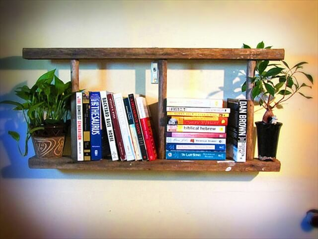 DIY Wood ladder Shelf