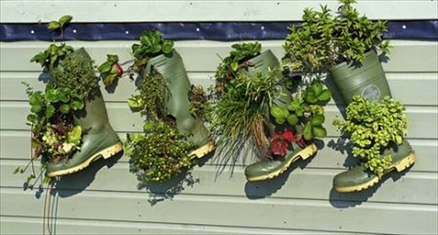 Green shoes planter ideas