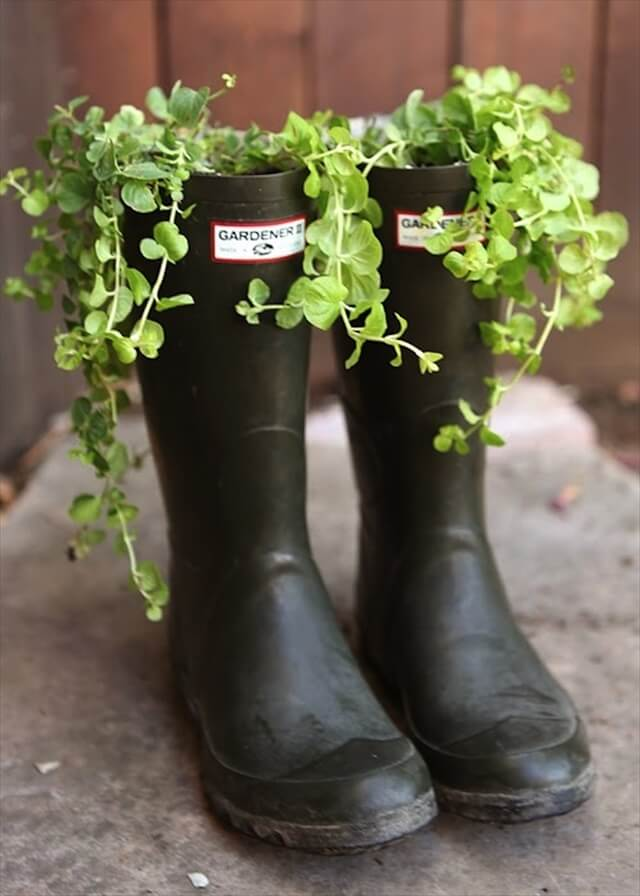 This rustic collection of boot planters are full of colourful flowers that bring a wall space to life.