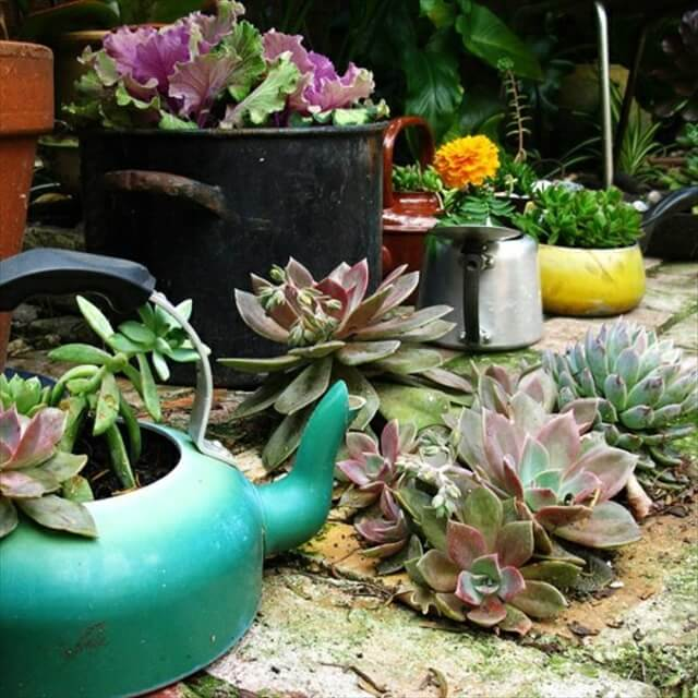 old pots container garden