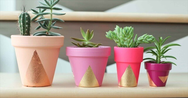 If you have trouble keeping indoor flowers or plants alive…succulents are the answer to your plant problems! Succulents thrive in the simplest of environments as one of the easiest plants to take care of – and they are super cute! From painted pots to vintage containers, succulents can grow in almost anything.