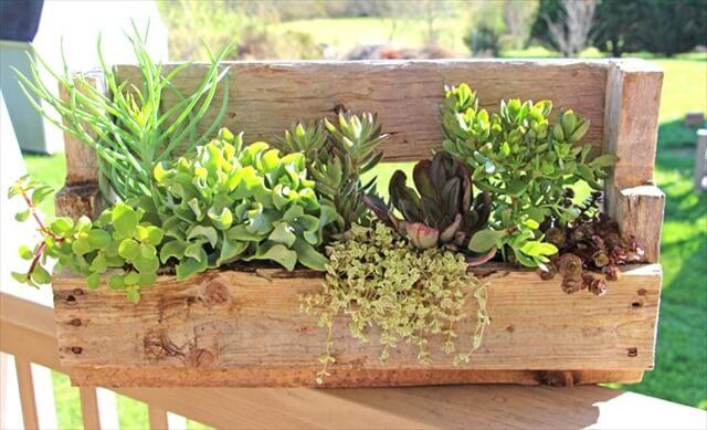 Pallet Wood Succulent Planter