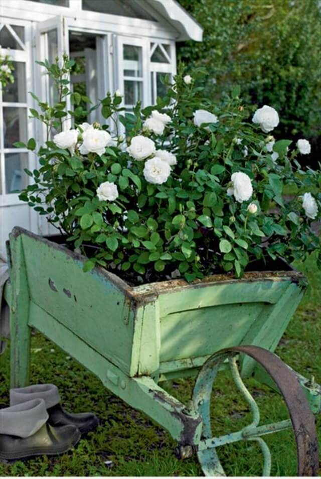 A rose garden wheelbarrow mobile