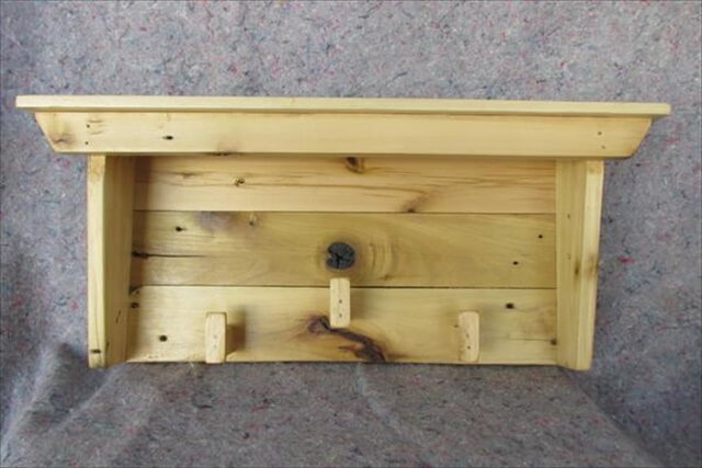 amazing recycled pallet shelf