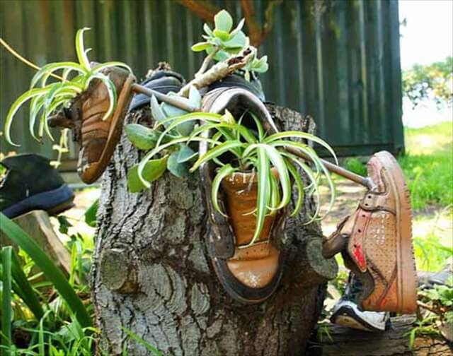 recycling old shoes for plant containers