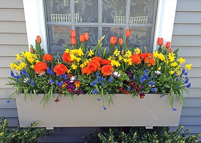 spring window box for decoration
