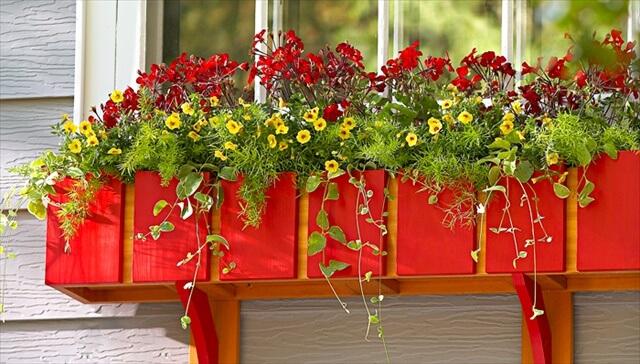 red window box planter ideas