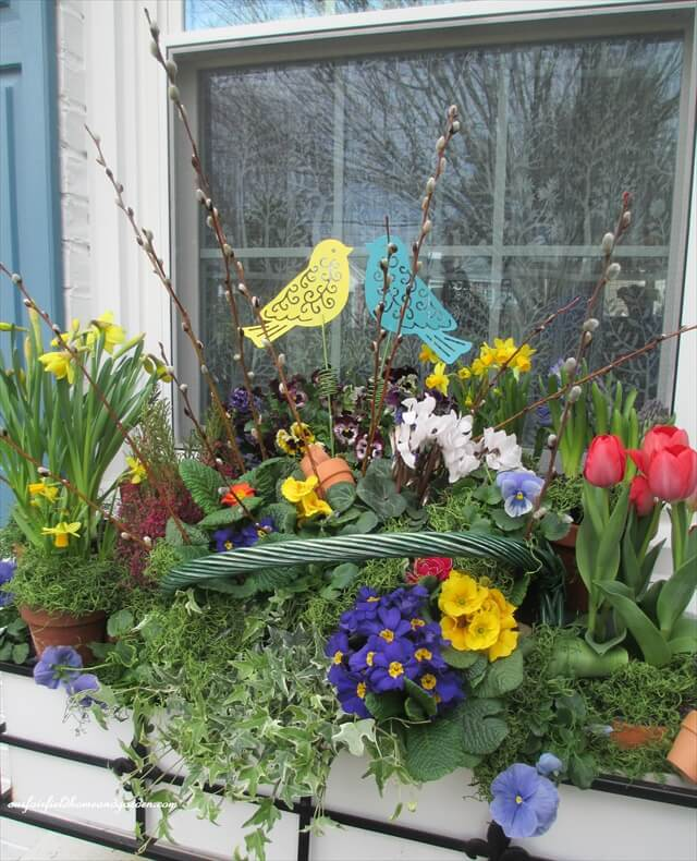 completed window box with flowers