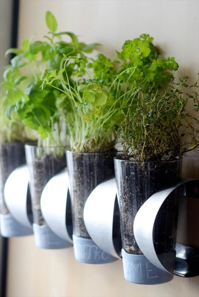 Wine Rack Herbs