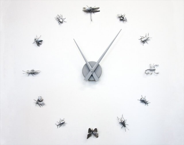 Curiosities Wall Clock: