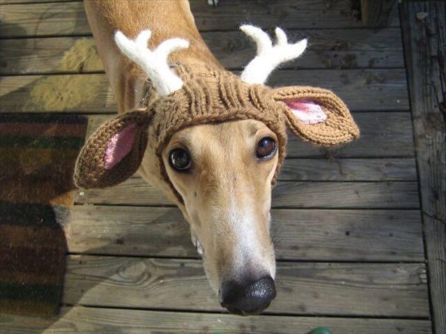 diy deer hat design