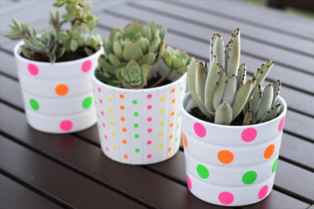 Polka Dotted Planters