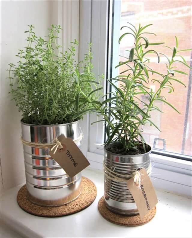 cute diy herb garden indoor garden ideas - Diy Herb Garden Ideas