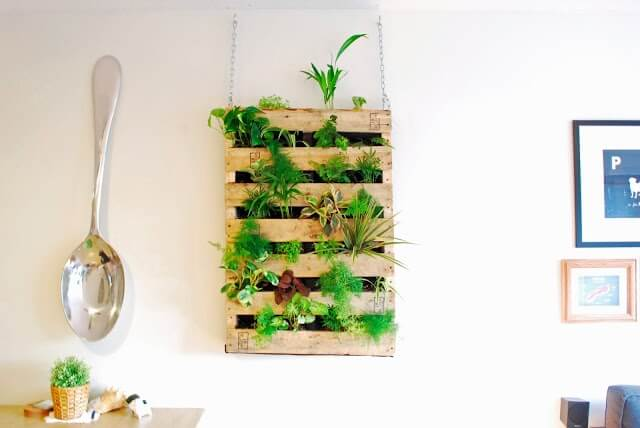 Living Pallet Wall