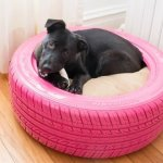 16 DIY Best Ideas For Dogs