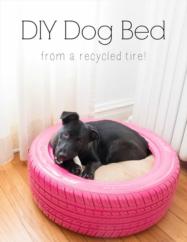 Dog Tire