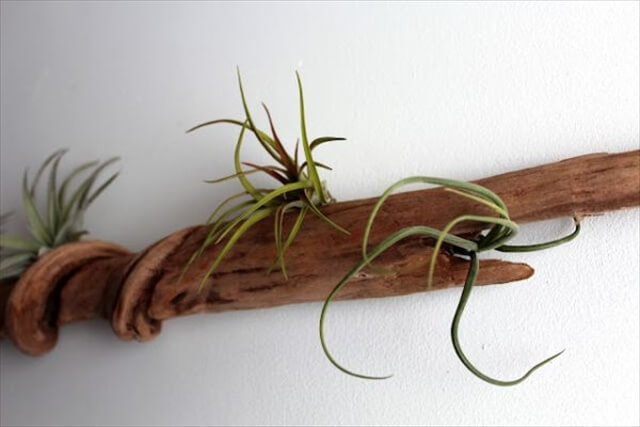 DIY Driftwood Decoration Ideas To Create A Unique Home Decor