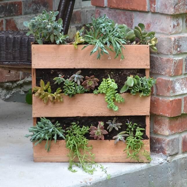 DIY Cedar Pallet Succulent Planter: