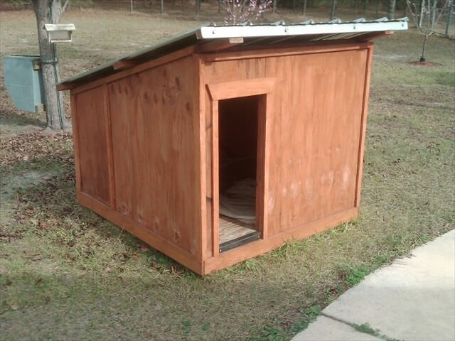 Best Pallet Dog House