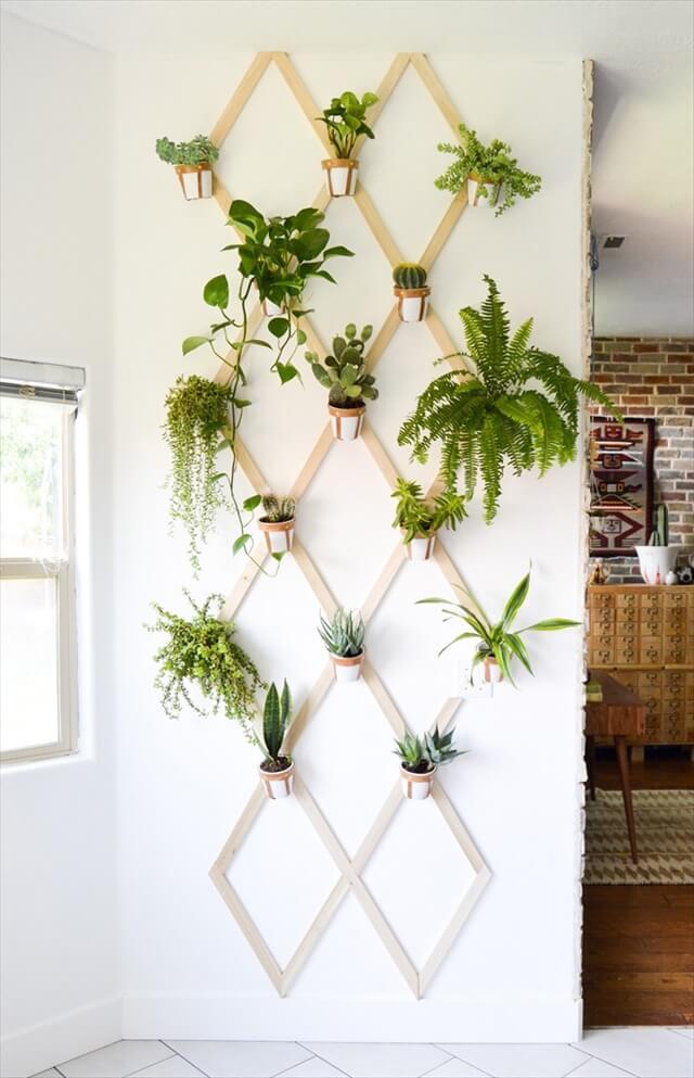 Indoor Plant Trellis