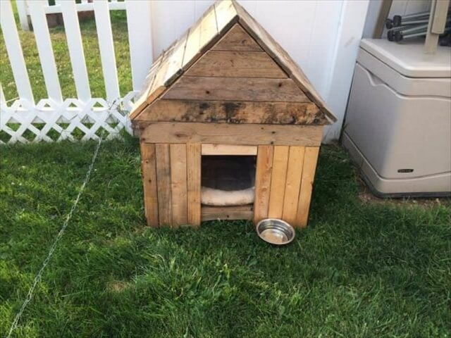 New Dog House From Recycled Pallets
