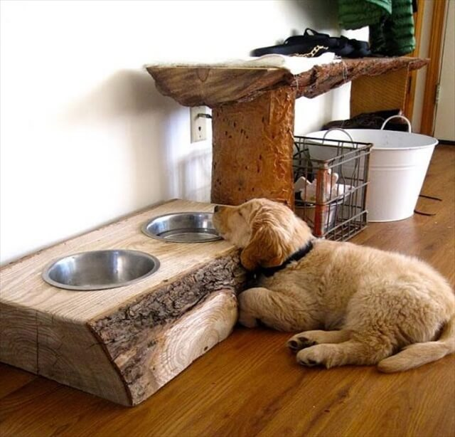 Pallets made dog bowl stand
