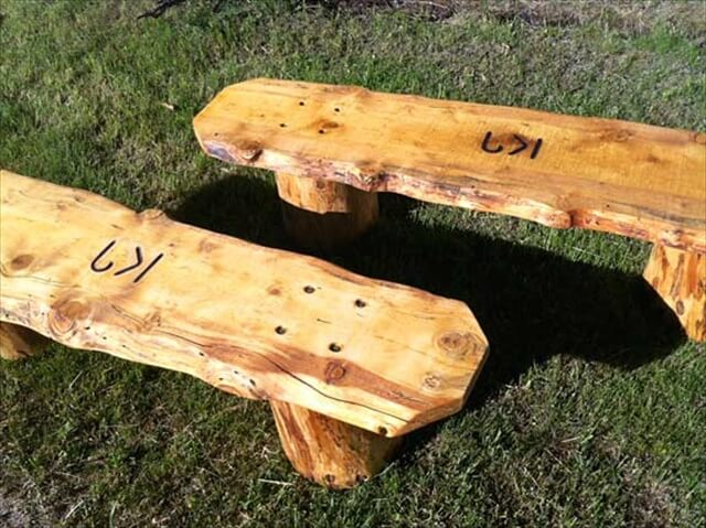 handmade log slab benches made workamping