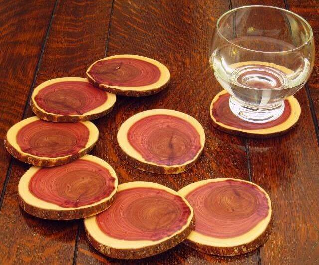 Coasters Made from a Log