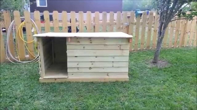 Diy Dog Kennel And Run Plans