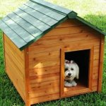 11 DIY Pallet Doghouse Ideas