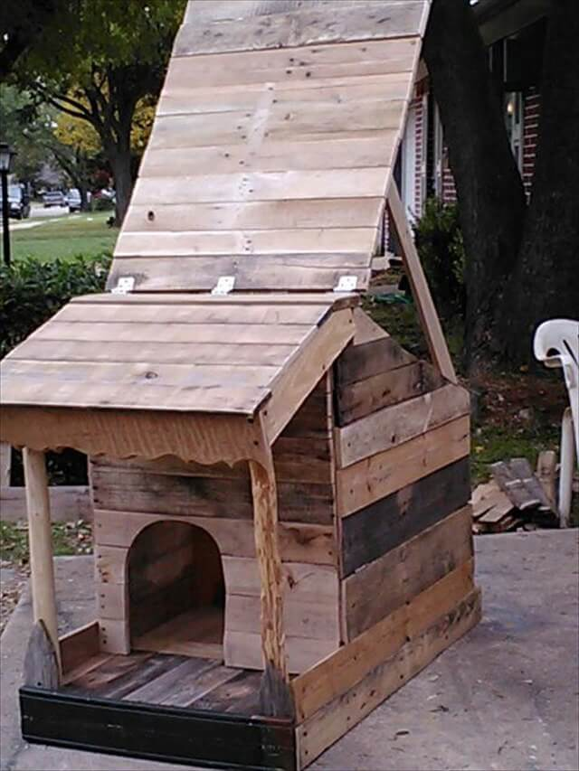 Pallet dog house with open roof for cleaning or just airing out.