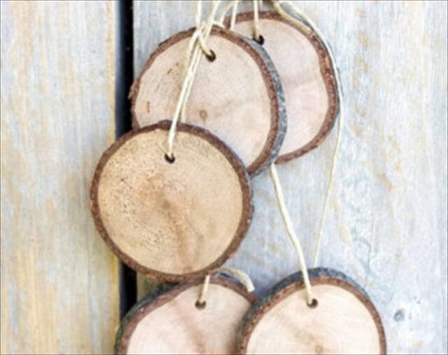 Tree Slice,