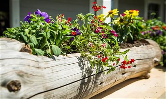 Old Wood Log Planter Project: