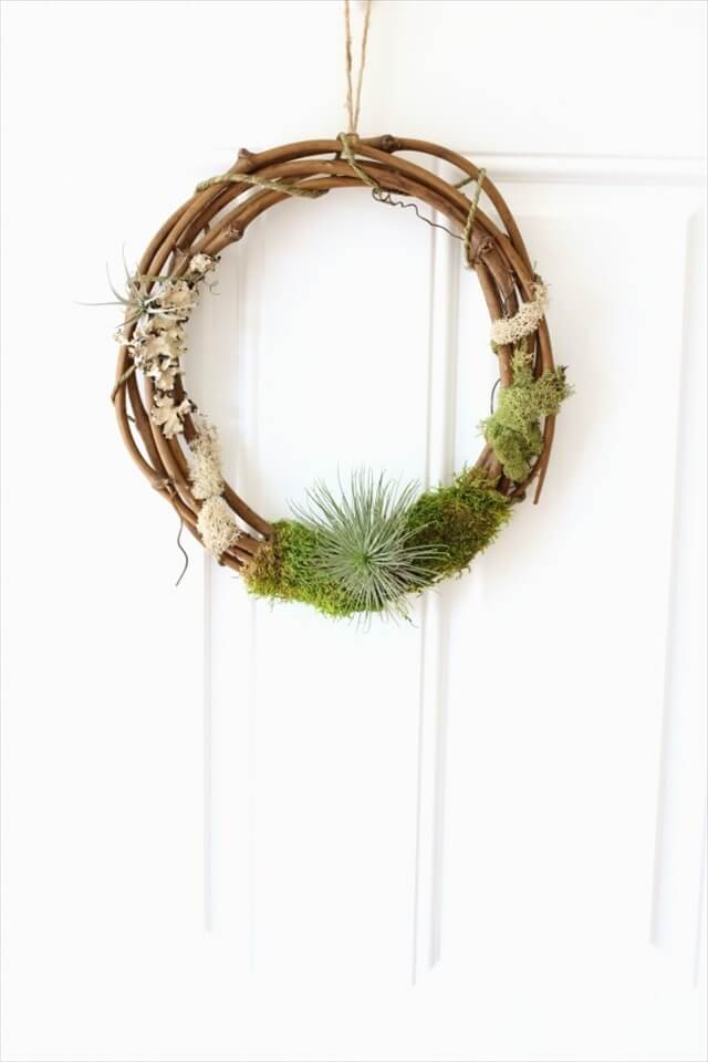 Air Plant Wreath