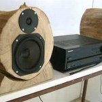 DIY Wood Log Speakers: