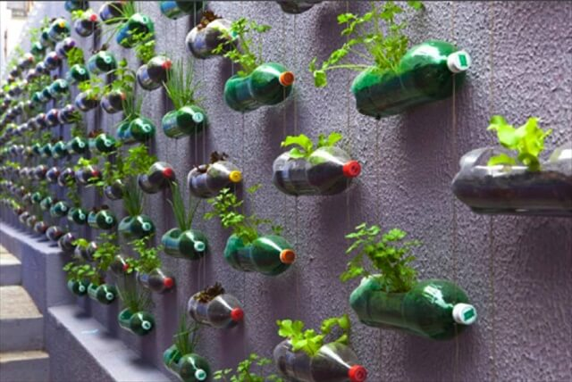 old soda bottles recycled planters