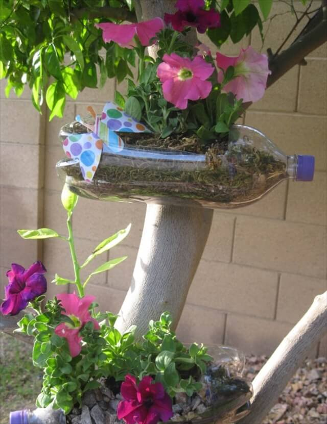 soda bottle planters for decor your garden